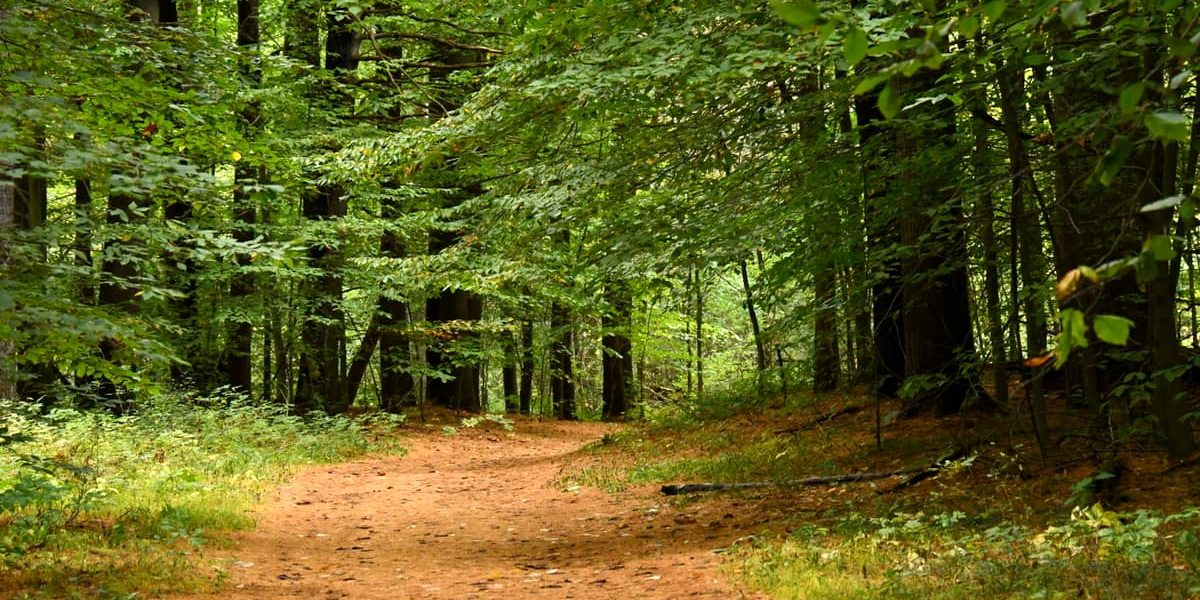 st-lawrence-county-hiking-canton-canoe-trail